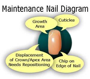 How To Maintain Your Nail